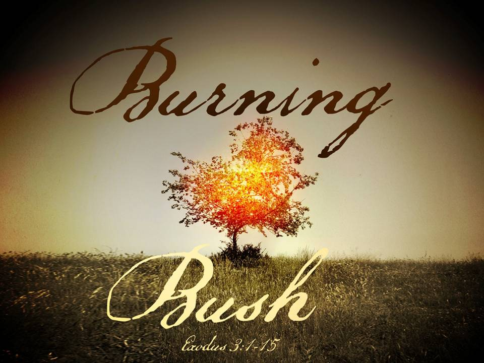 moses and the burning bush exodus Faith quest moses and the burning bush good news scripture: exodus 3:1-4:17 memory verse i will be with you always, even until the end of the world (matthew 28:20b.